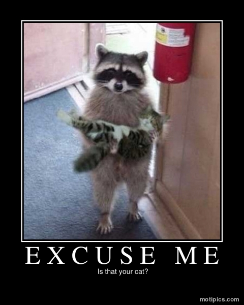 Excuse Me Motivational & Demotivational Photo