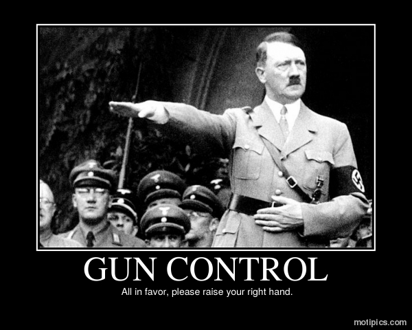 Gun Control Motivational & Demotivational Photo